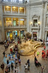 Entrance to the Natural History Museum in Washington DC
