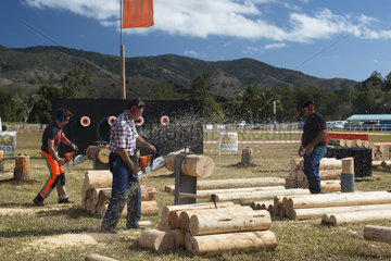 Contest of cutting speed of wood with a chainsaw  Agricultural Fair of Bourail. New Caledonia.