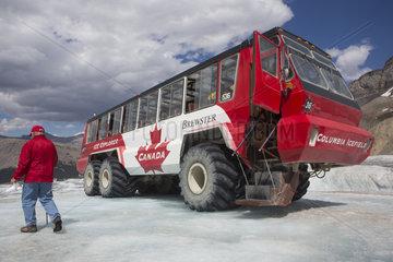 glacier walk jasper national park  canada