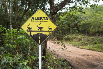 Sign indicating the passage of monkey  track around San Jose del Guaviare  Colombia