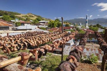 Manta meat drying - Lamakera Solor Indonesia