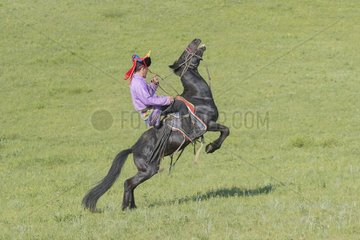 Mongol man traditionnaly dressed on a horse  traditional exercise of address  demonstration of pitching  Bashang Grassland  Zhangjiakou  Hebei Province  Inner Mongolia  China