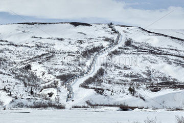Trans Alaska Pipeline System (TAPS)  along the Richardson Highway near Paxson  Alaska