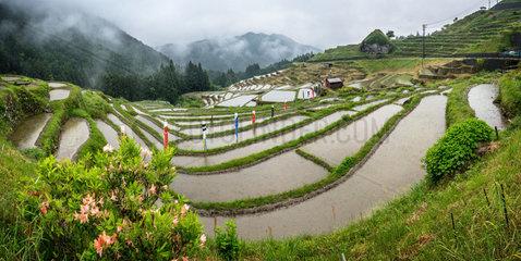 Maruyama Senmaida 's rice field  Japan