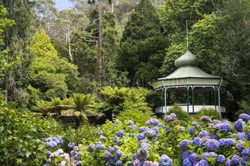Botanical Garden  Cataract Gorge Reserve  Launceston  Tasmania