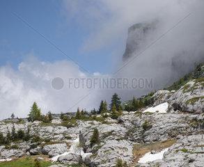 Lapiaz of Col de Sales  Nature Reserve Sixt-Fer à Cheval  Alps  France