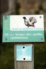 Marked Aubure discovery trail  the highest village in Alsace  capercaillie  Aubure  Haut Rhin  France