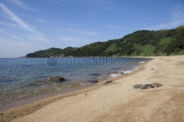 Ile Manabeshima - Seto Inland Sea Japan