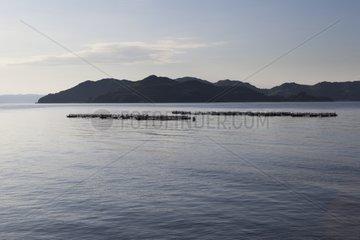 Fish breeding - Manabeshima Seto Inland Sea Japan