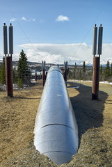 Trans Alaska Pipeline System (TAPS)  along the Richardson Highway  Alaska
