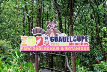 Mamelles Park  municipality of Bouillante  Guadeloupe Zoo