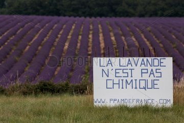 Sign against REACH regulation and lavender field - France