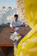 Payroll of the cotton harvest biological Maharashtra India