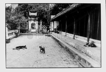 Citadel of ancient key Hoa Lu from the north Vietnam