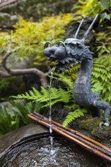 Dragon fountain and purification - Tokyo Japan