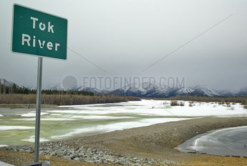 Tok River Thawed Along the Glenn Highway  Spring  Alaska