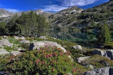 Lake Aumar - Reserve Neouvielle Pyrénées France