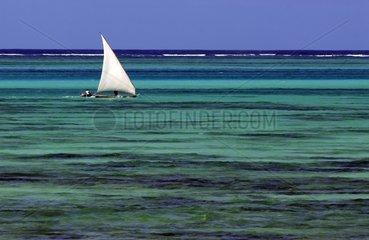 Sailing canoe in the Boutre lagoon Zanzibar