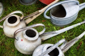 Old watering cans in a garden