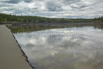 Tanana River and its alluvial beds near Tok  Alaska  USA