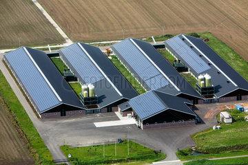 solar panels on farm buildings in Holland