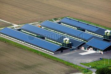 solar panels on farm buildings in Holland