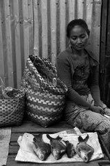 Fish saleswoman at the market of Ban Nakassang in the Laos