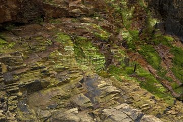 Rock strata in Cornwall in England