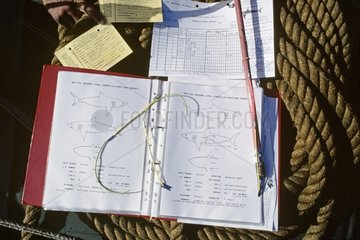 Tags with log book and diagrams of Great White Shark