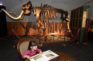 Girl with Woolly Mammoth skeleton of Lyakhov island
