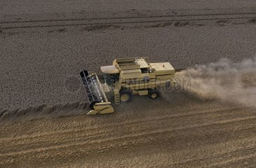 Air sight of a combine harvester during the harvest