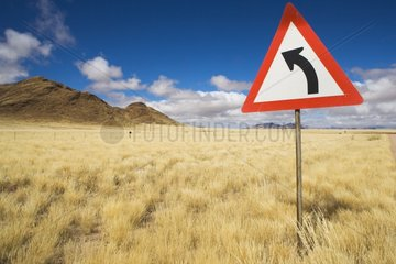 Curve sign Grass in Namib Desert after unusual rains Namibia