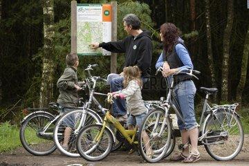 Cycling in national park Sallandse Heuvelrug Netherlands