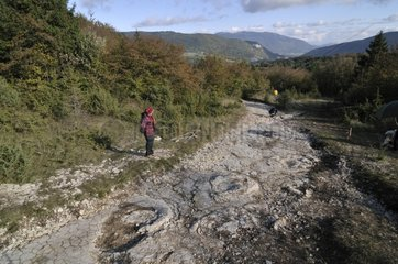 Site of footprints of Sauropod Dinosaurs in mudstone France