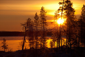 landscape of Northern Finland