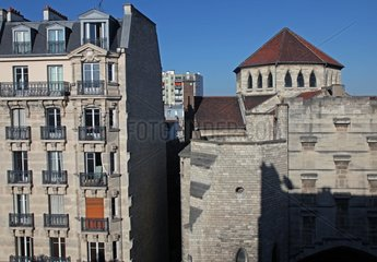 Kestrel nest in the oculus of a facade - Paris France
