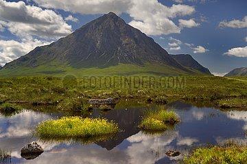 Buachaille Etive Mor from Rannoch Moor - Scotland UK