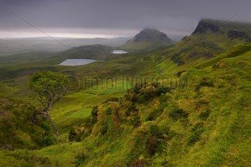 Quiraing mountain under low clouds - Isle of Skye Scotland