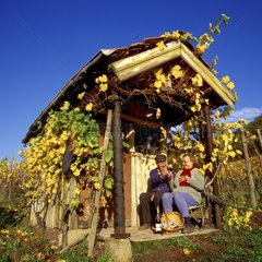Vintage break - Moselle Vineyard Luxembourg