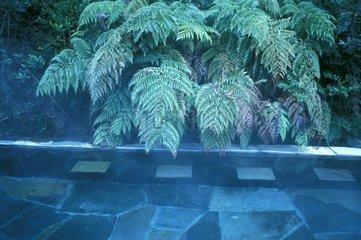 Bath in Termas géometricas in Chile