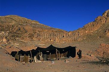 Bedouin tent in the Sinai Desert Egypt