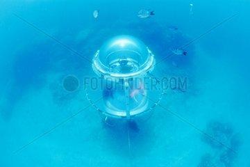 Divescope restrained 7 m deep New Caledonia