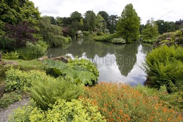 Lake and massifs of the Sandringham country house England