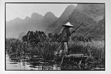 Fishing for crayfish on the river Salongane Vietnam