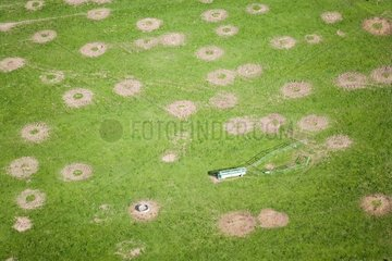 Traces of the displacement of the round balls of hay France