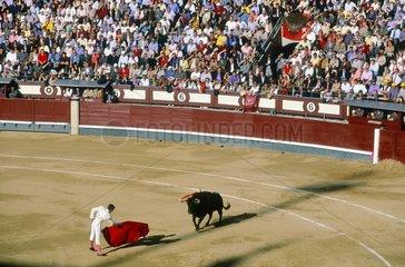 Castille  Madrid  corrida
