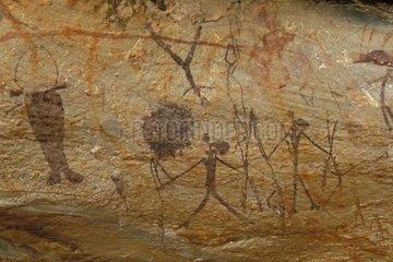 Cave paintings aboriginals bradshaw type Kimberley