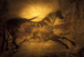 Cheval sauvage représenté sur une peinture rupestre