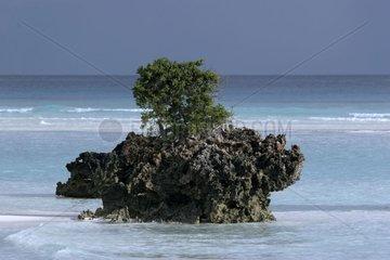 Rock Glorious Islands [AT]