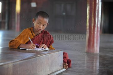 Young monk reviewing his lessons Monastery Nyaungshwe
